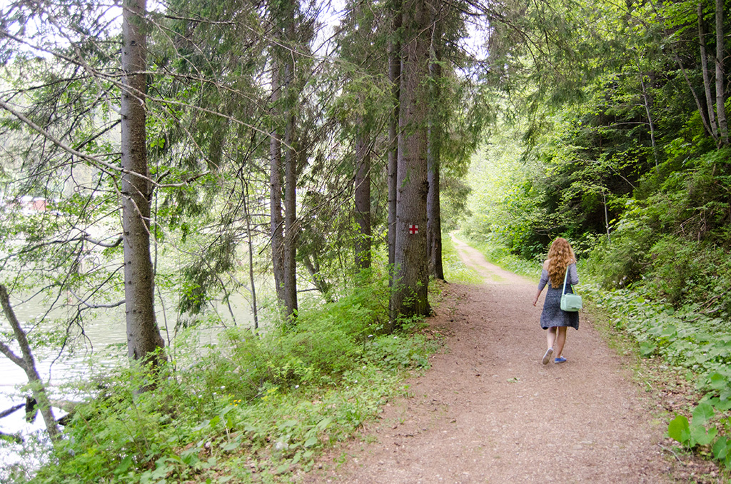 Traseu Lacul Rosu    The Red Lake Trail