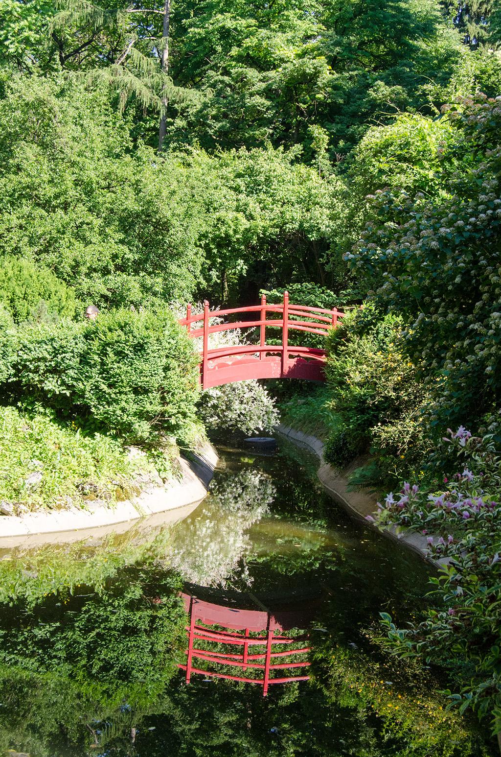 Japanese garden - Botanical Garden Cluj-Napoca