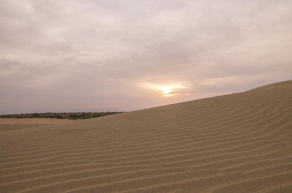 Sunrise in Thar Desert