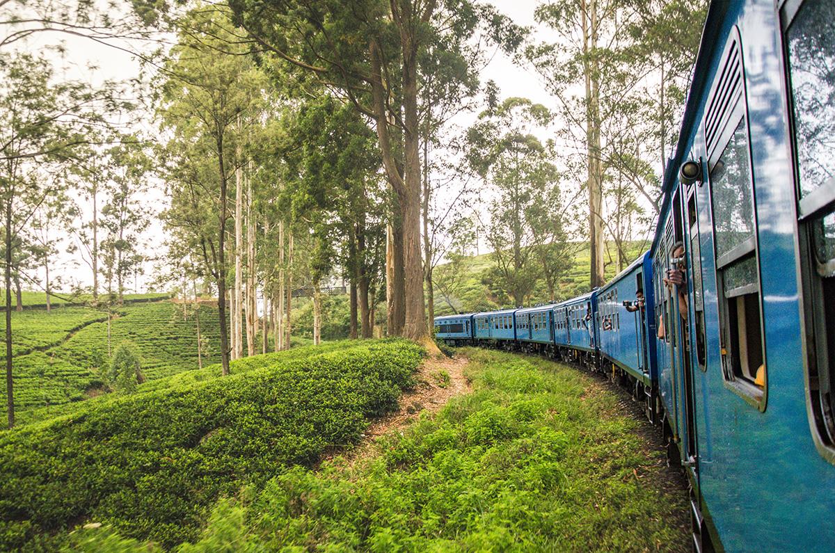 The Blue Train to Ella