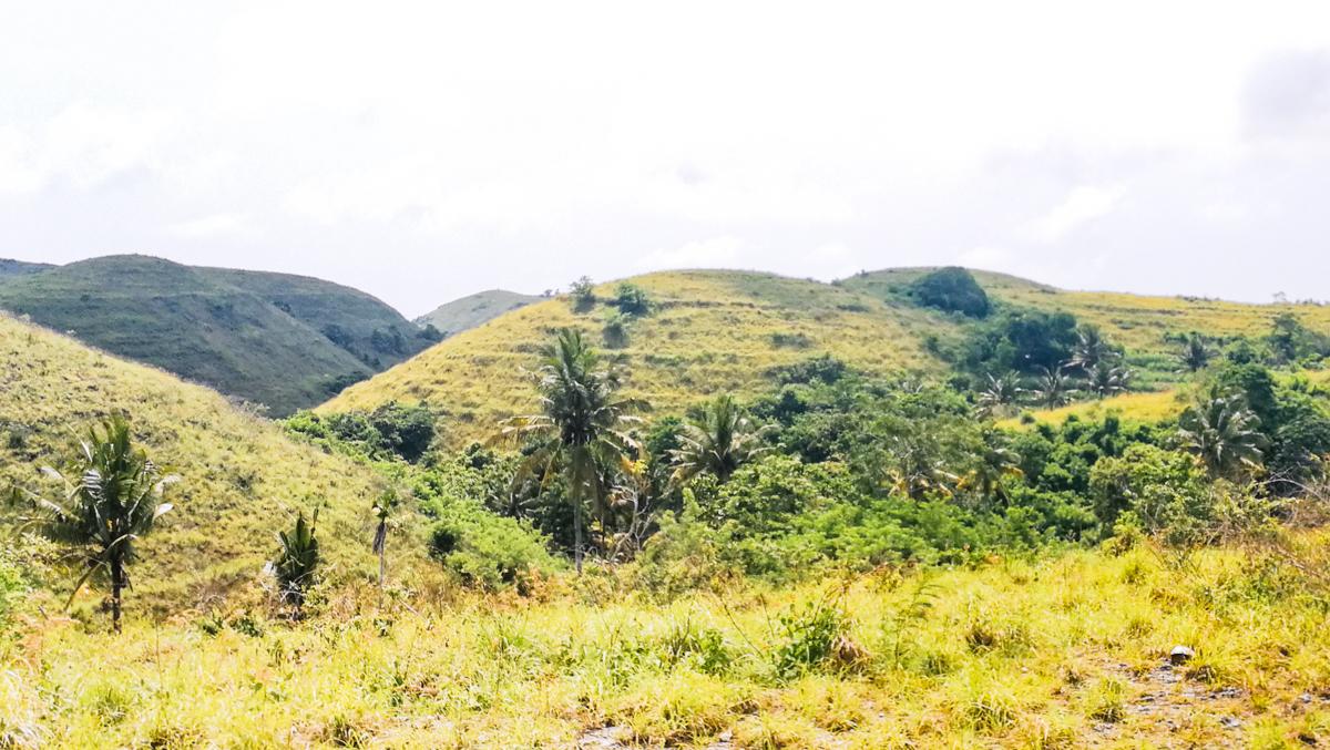 Teletubbie Hill